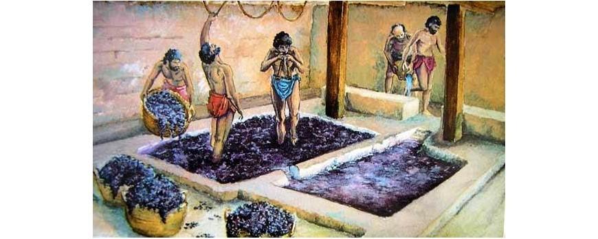 El vino y los Romanos.